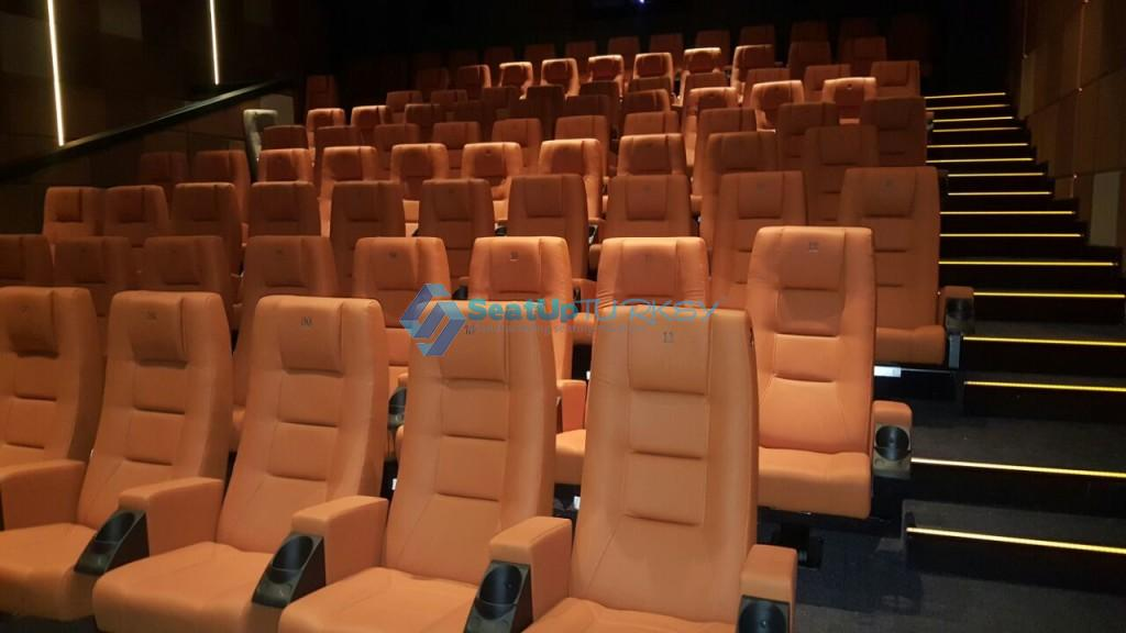 VIP 500 model Application in CInema Hall